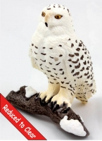 14671 snowy owl reduced