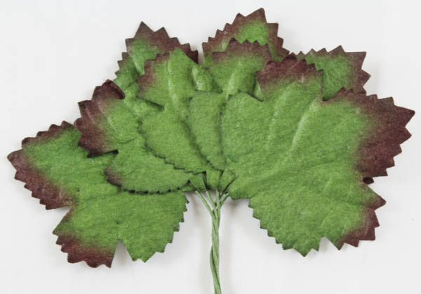 40mm Maple Embossed Mulberry Paper Leaves Dark Green Colour 5 pack