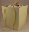Cream Rope Handle Gift Bag