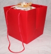 Red Rope Handle Gift Bag
