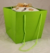 Green Rope Handle Gift Bag