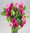 Mini Rose Bush Dark & Light Pink Roses
